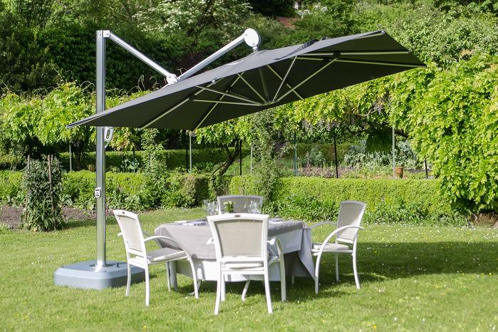 Le parasol Sunflower